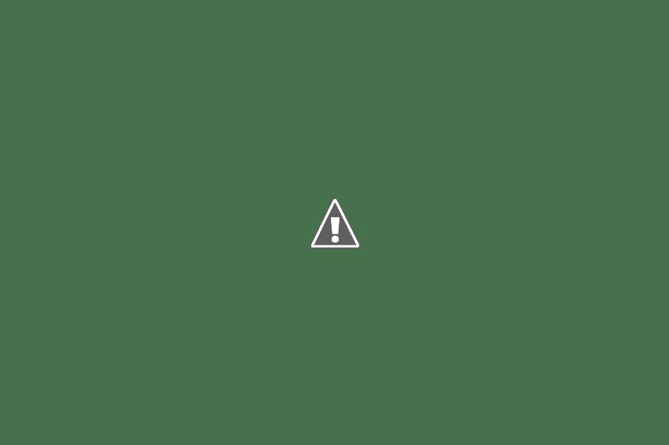 百里基地航空祭の風景