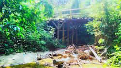 Sebulan Tak Turun Hujan, Sungai Di Siabu Mengalami Kekeringan, Warga Mulai Susah Cari Air