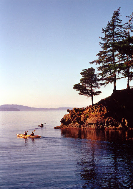 Kayaking in Wildcat Cove provides an up-close view of the life forms in the beautiful bay. / Credit: Robert Jame