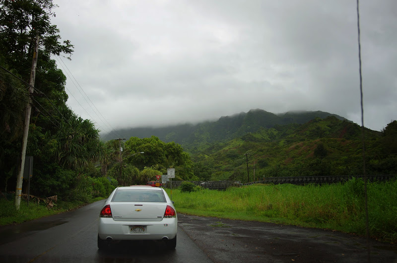06-25-13 Annini Reef and Kauai North Shore - IMGP9268.JPG
