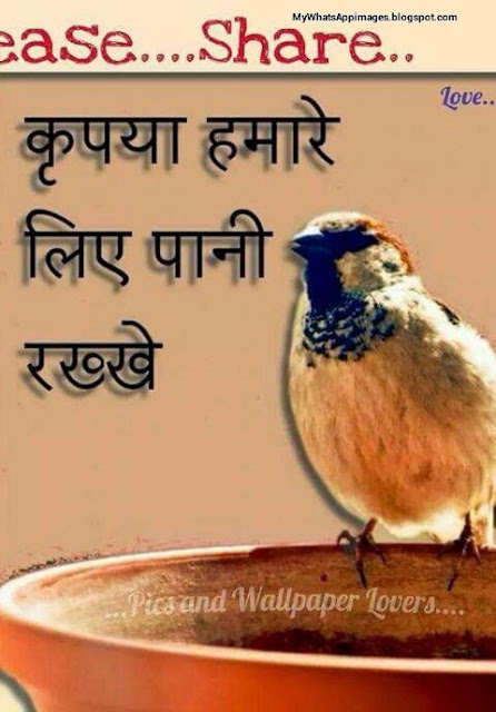 Hindi Quotes For Instagram