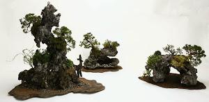 2007年 Debuliでの石付盆栽展示
