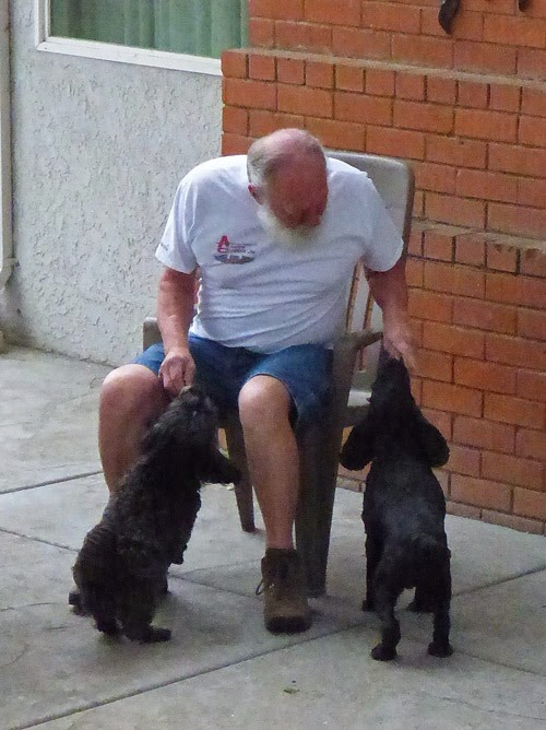 Skruffy and Bubba getting morning treat from Uncle Arny