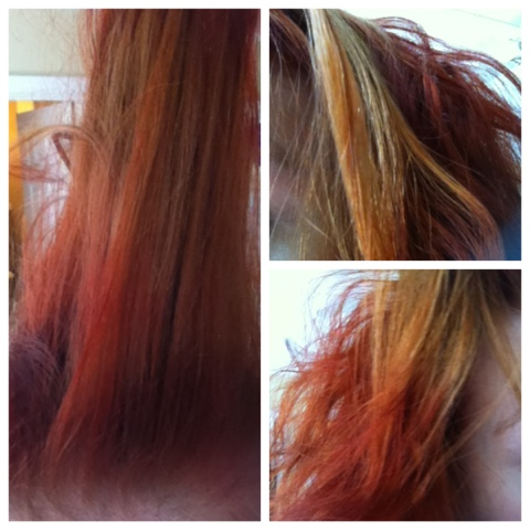 The Scary Hair Color Incident Garnier Olia Review