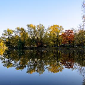 Herastrau park by Stefan Ungureanu - City,  Street & Park  City Parks ( water, bucharest, park, autumn, lake, leaves, city )