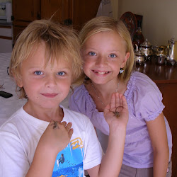 Amelia og Harvey