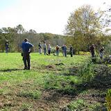 Guilford Salt Meadows Sanctuary Planting - IMG_7839.JPG