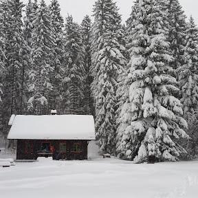 Jesenovanje, Črni dol 2015 - 20151122_092145.jpg