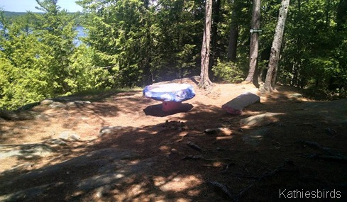 22. Trail's end on the Overlook 6-17-15
