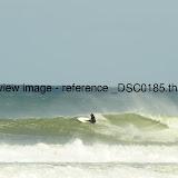 _DSC0185.thumb.jpg