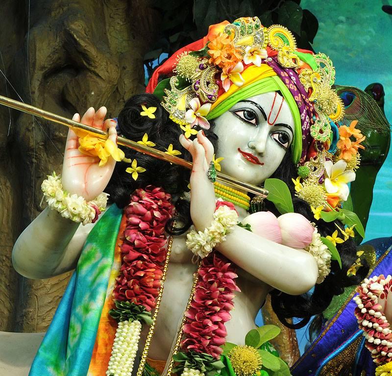 ISKCON Chowpatty Deity Darshan 11 May 2016 (6)