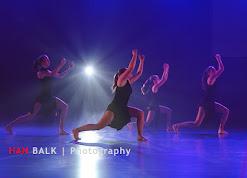 Han Balk Voorster Dansdag 2016-4528-2.jpg