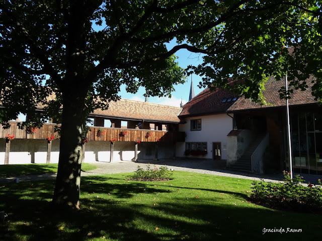 passeando - Passeando pela Suíça - 2012 - Página 15 DSC05564
