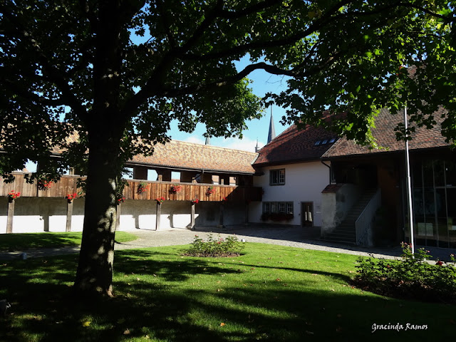 Passeando pela Suíça - 2012 - Página 15 DSC05564