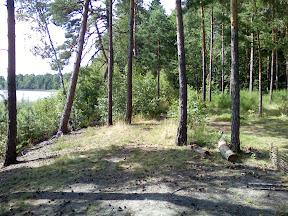 2008-08-02-kukushka