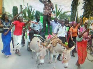 Malindi Mp Aspirant ridding on a donkey to the IEBC offices.