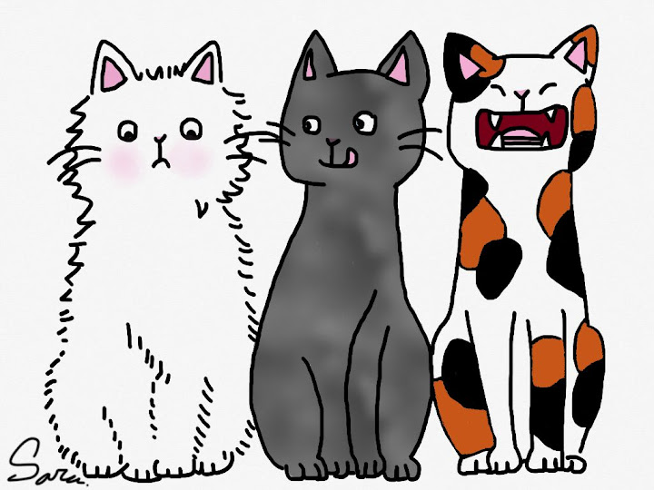 3 cute cats made with Sketches