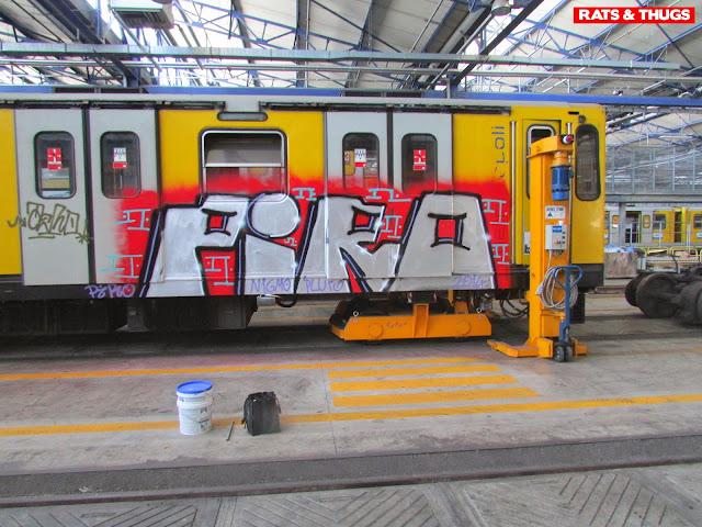 piro (2)