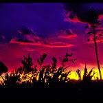 J06i Sunset 2.jpg