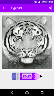 Learn How to Draw Tigers - náhled