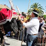 CaminandoalRocio2011_421.JPG