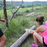 Campaments Estiu Cabanelles 2014 - IMG_0333.JPG