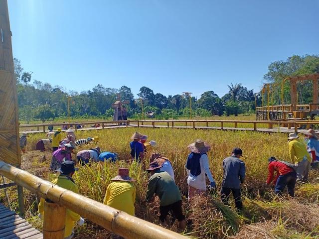 Membangkitkan Tradisi Ba'arian Mangatam di Pasar Budaya Racah Mapulang Desa Balida