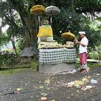 0538_Indonesien_Limberg.JPG