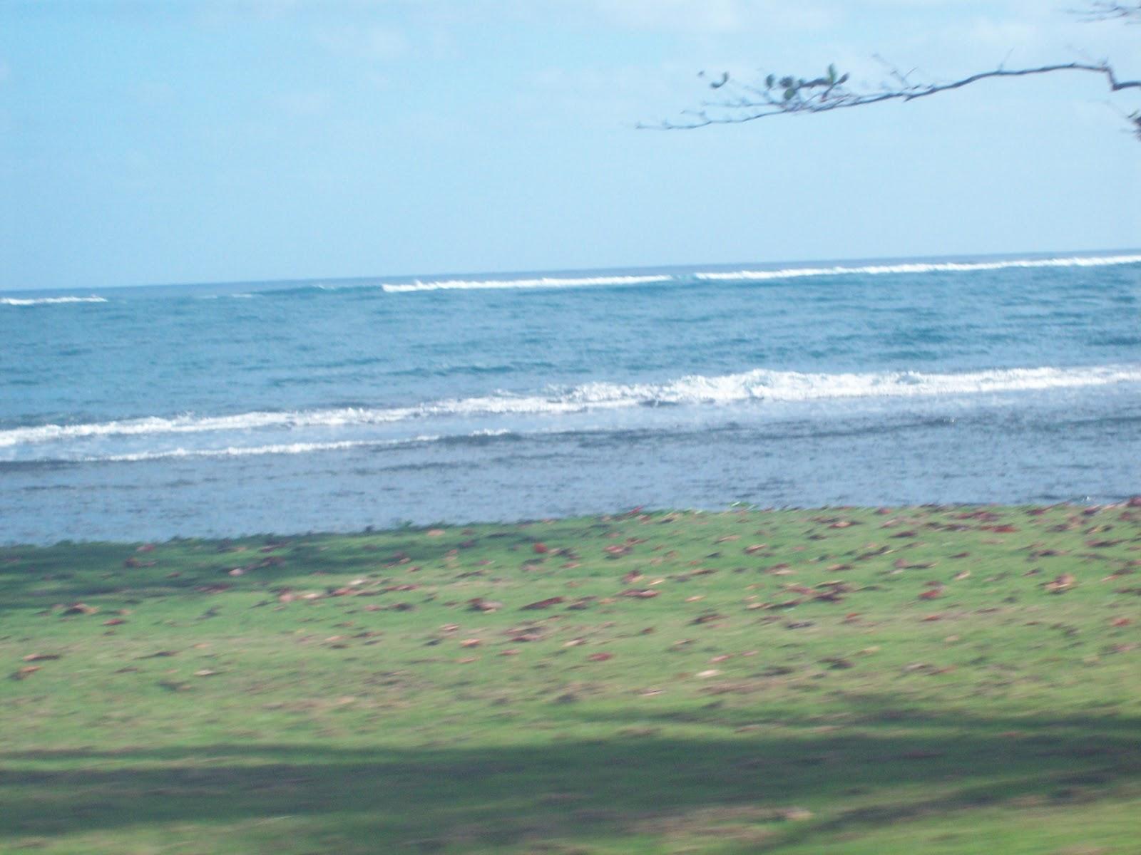 Hawaii Day 3 - 114_1066.JPG