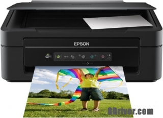 Download Epson XP-204 printer driver and installed guide