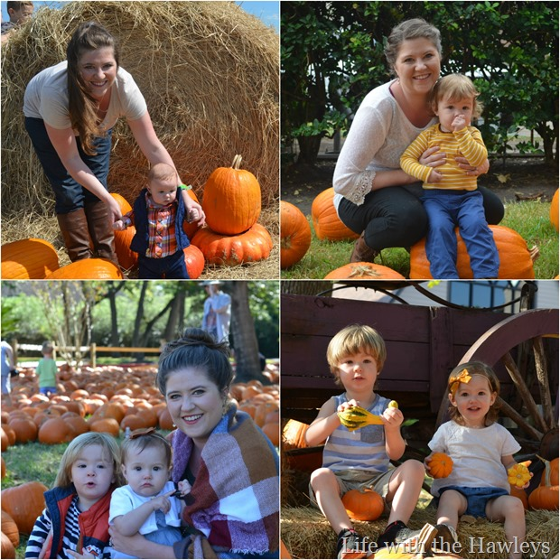 Pumpkin Patch through the Years- Life with the Hawleys