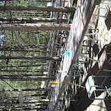 Griebal 2006 - PICT1633.JPG