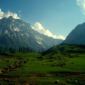 by Shambaditya Das - Novices Only Landscapes (  )