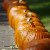 10-26-14 Dallas Arboretum - _IGP4293.JPG