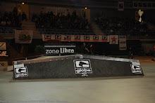 metz-globe12012008_4
