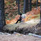 SingiDigital 28.12.2011 - 18.jpg
