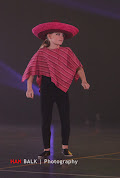 Han Balk Voorster dansdag 2015 middag-2492.jpg