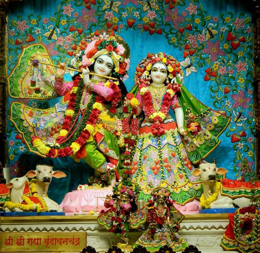 ISKCON Pune NVCC Deity Darshan 01 Jan 2017 (12)