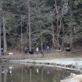 20140101 Neujahrsspaziergang im Waldnaabtal - DSC_9829.JPG