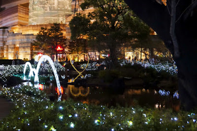 They don't celebrate Christmas in Japan like the west does - it's more a romantic holiday, this park in Roppongi Hills is supposed to be very romantic to walk in with these holiday lights