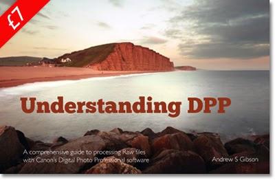 Understanding DPP andrew s gibson