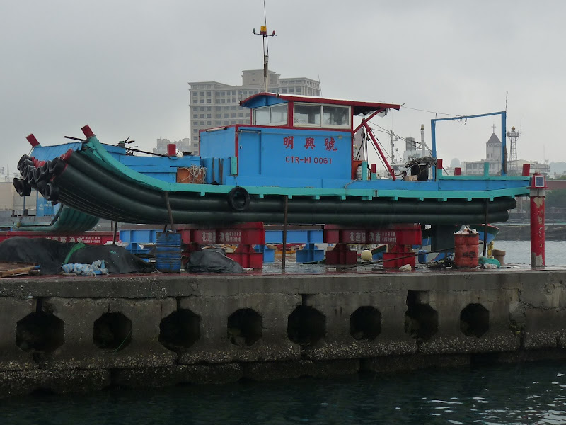 TAIWAN . Hualien et au Sud de Hualien,presque jusqu à Taitung - P1170030.JPG