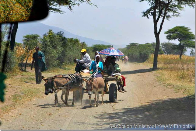 Mule cart w people