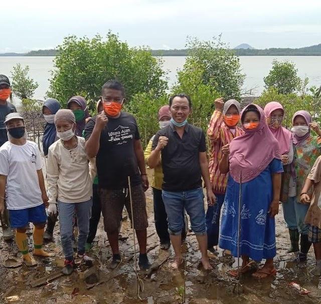 Kurangi Abrasi Ketua DPC PDIP Tanah Bumbu Tanam 5 Ribu Bibit Mangrove