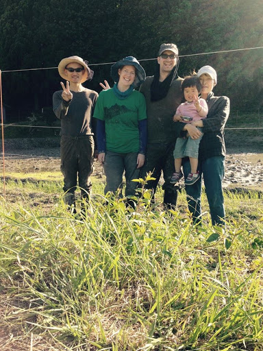 Volunteering in a Rice Paddy