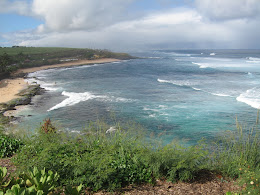 Hookipa, one of the better surf spots on Maui.