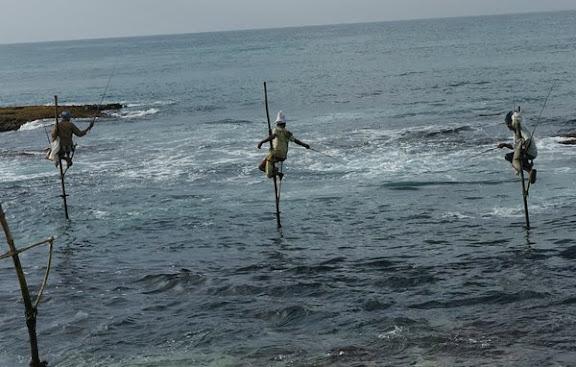 fishing.jpeg