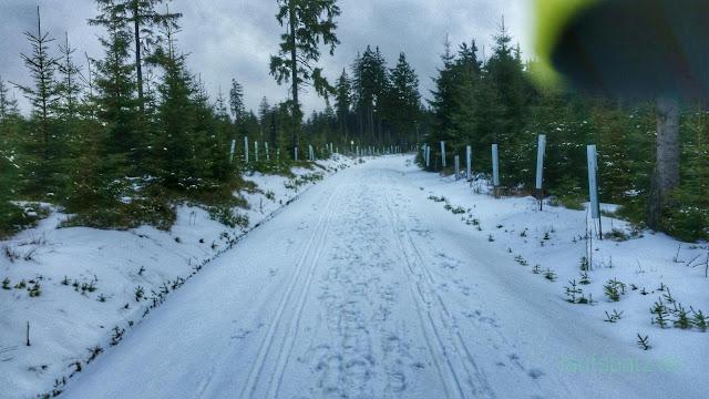 Blick auf den verschneiten Kammweg