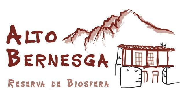 [thumbnail_logo_alto_bernesga-13]