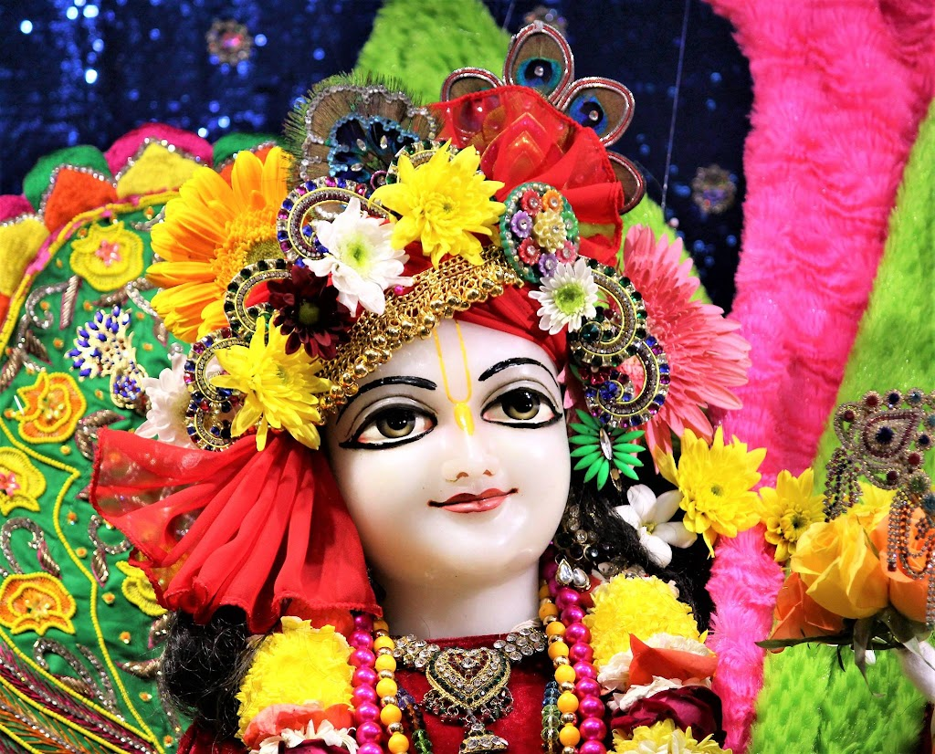 ISKCON Punjabi Bagh Deity Darshan 10 Jan 2017 (12)